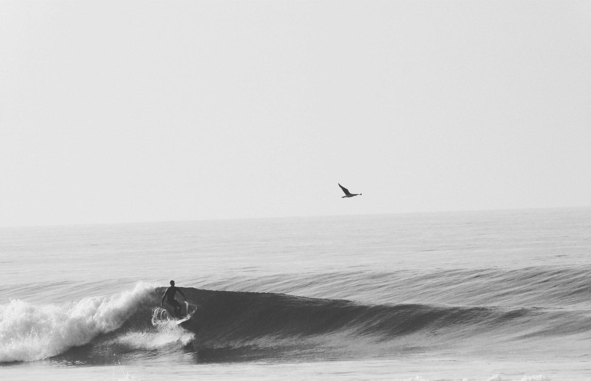 Cachalot Surfboards planche surf bois artisan shape atelier hollow wooden surfboard