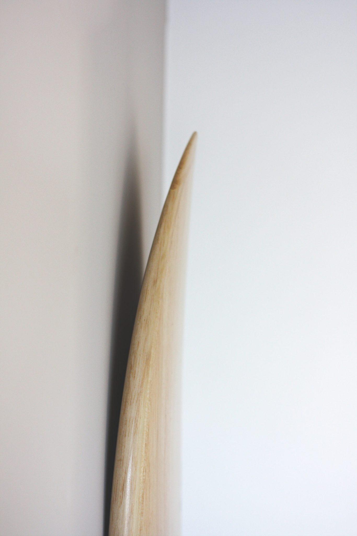 Cachalot Surfboards planche surf handmade artisan shaper hollow bois merguez