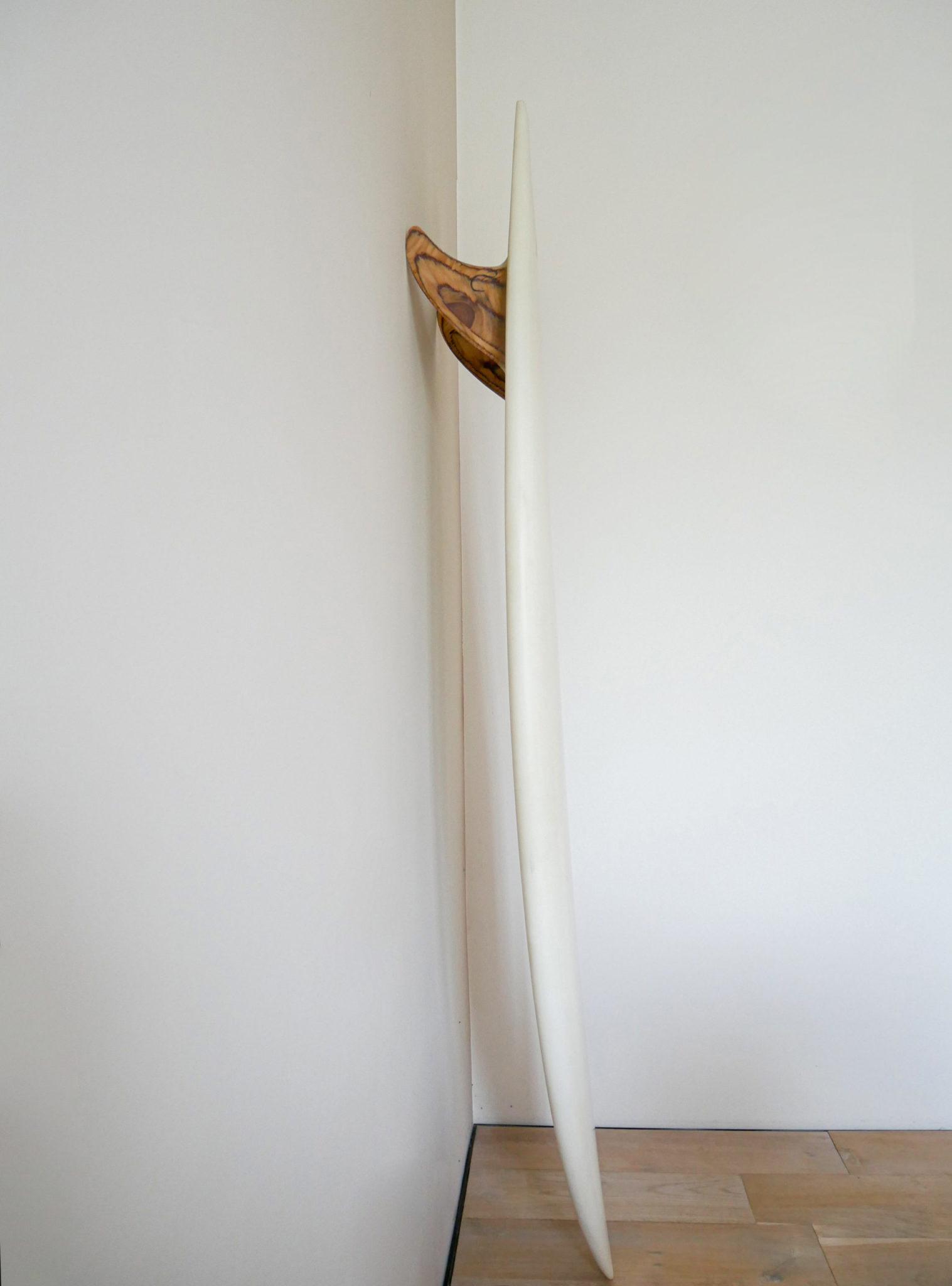 cachalot surfboards planche surf handmade artisan shaper hollow bois hareng