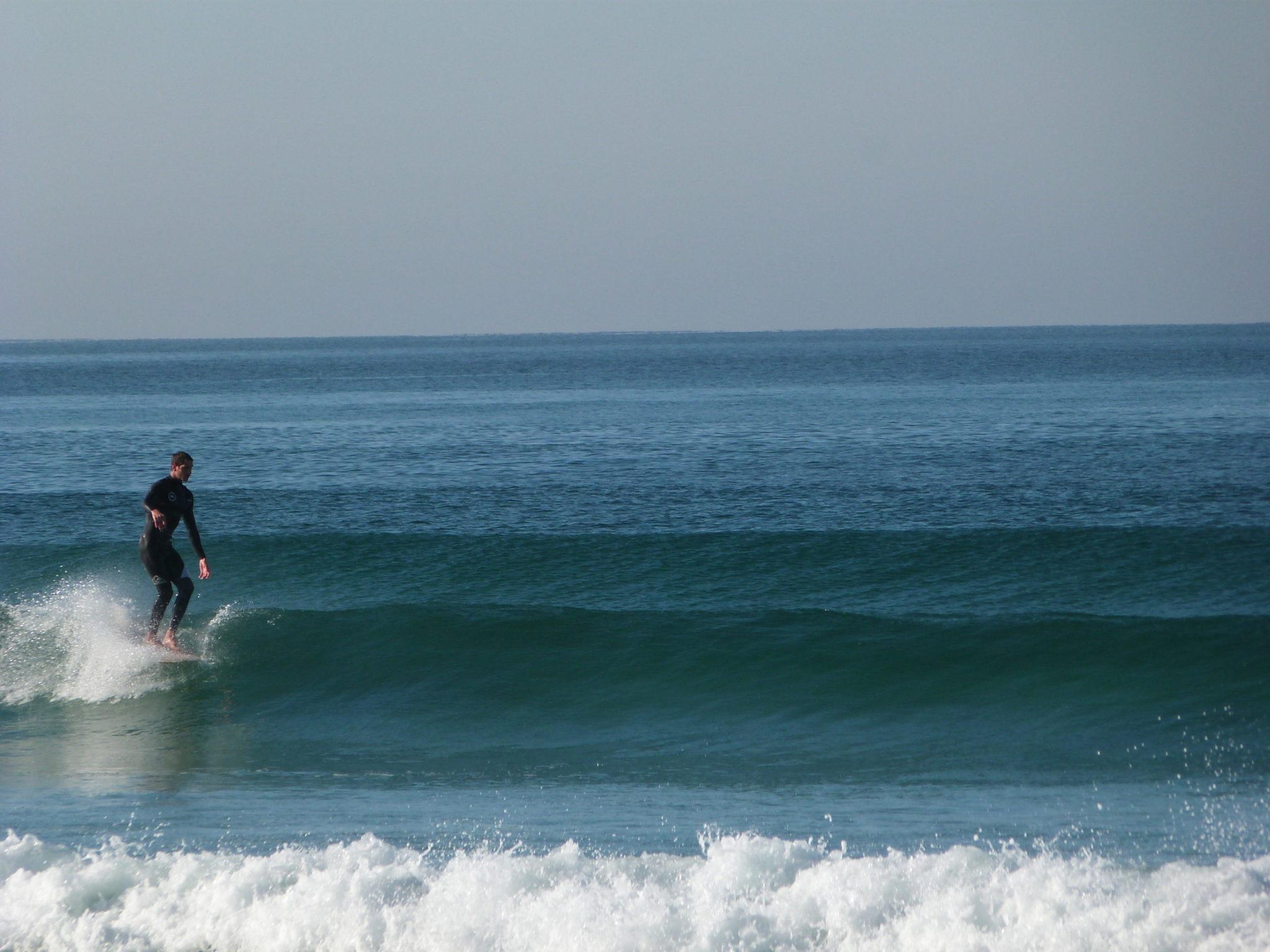 Cachalot Surfboards surfboard artisan surf shaper bois hollow wooden bois longboard lauzin