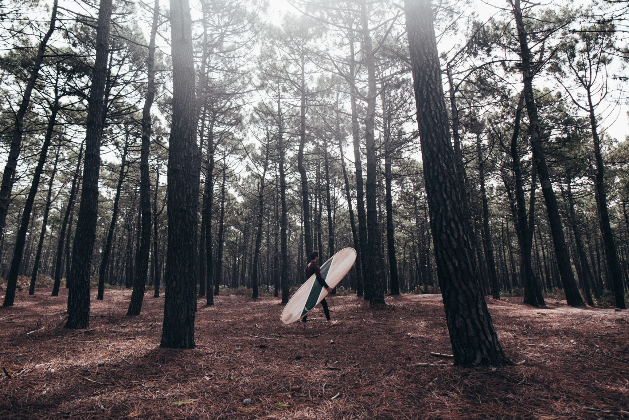 Cachalot Surfboards planche bois surf handmade artisan shaper hollow bois sunrise over sea lauzin